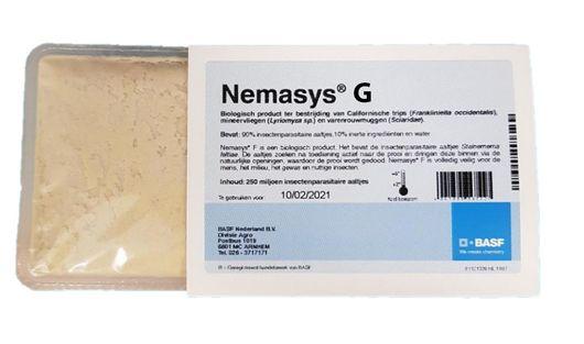 Nemasys G